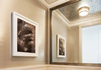 Featured Project: 100 Barclay, installation view