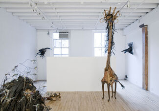 The Natural: Johnston Foster, installation view