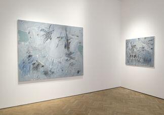 Konstantino Dregos: Lapsus, installation view