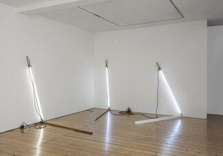Pedro Cabrita Reis, installation view