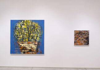 """Gilad Efrat - """"Sandwalk"""", installation view"""