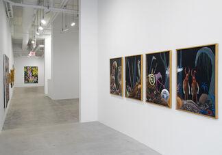 Stefanie Gutheil: Die Beobachter, installation view