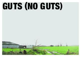 GUTS (NO GUTS), installation view
