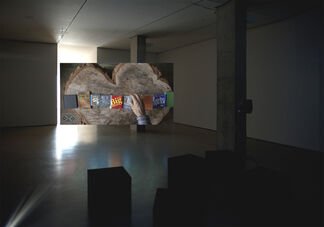 Nina Yuen: Narcissus, installation view