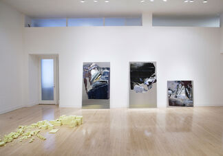 Leslie Shows: Split Array, installation view