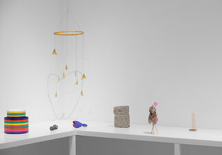 Objects Like Us, installation view