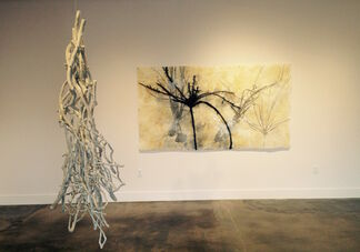 Meditations on Nature, installation view