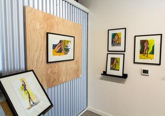 Flesh - Janet Matthey, installation view