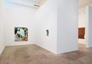 Sarah Awad: Gate Paintings, installation view