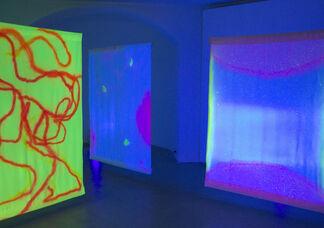 Bruno PEINADO / Lionel FAVRE / Hilario ISOLA, installation view