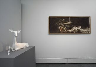 Whispers from the Earth, installation view