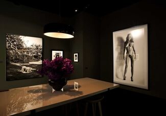 Hamiltons Gallery at TEFAF Maastricht 2012, installation view