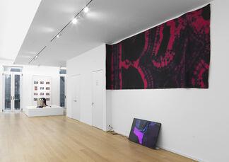 New Pleasure, installation view