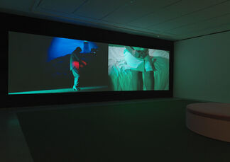 Sue de Beer: The White Wolf, installation view