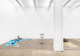 "CARSON FISK-VITTORI, DEREK FRECH & ALEX ITO, ""DATA-SCENT"", installation view"