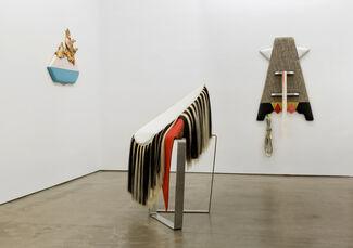 Trish Tillman: Stage Diver, installation view