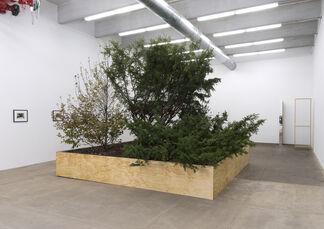 Circa, installation view