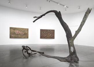 Giuseppe Penone: Equivalenze, installation view