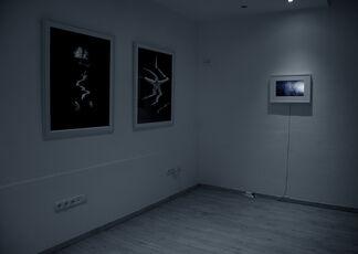 Groping in the Dark, installation view