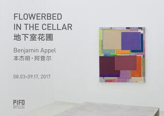Flowerbed in the Cellar, installation view