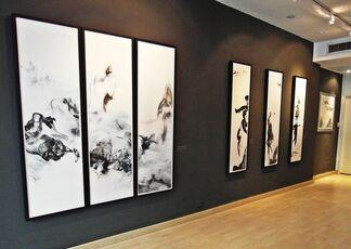 Evolution, installation view