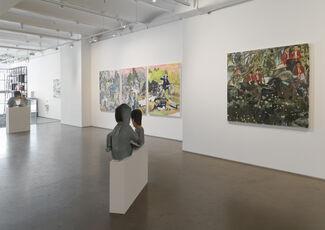 Maia Cruz Palileo - Dear, dear, dear, installation view