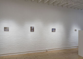 Far and Long Gone By: Maya Brodsky, installation view