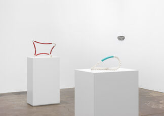 Ricky Swallow: NEW WORK, installation view