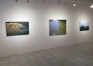Þorri Hringsson, installation view