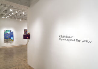 Pagan Knights & The Vertigo, installation view