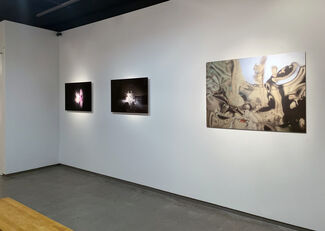 RIVER OF SHADOWS curated by Kim Harty, installation view