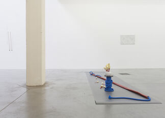 Natural Perfection, installation view