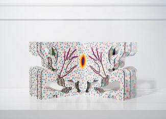 Lucas Samaras, installation view