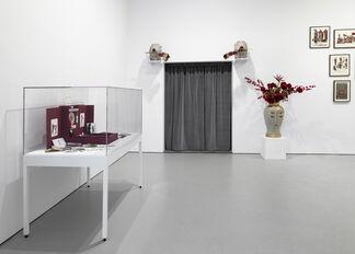 Marcel Dzama Une Danse des Bouffons (A Jester's Dance), installation view
