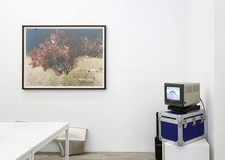 Sean Lynch: DeLorean Progress Report, installation view
