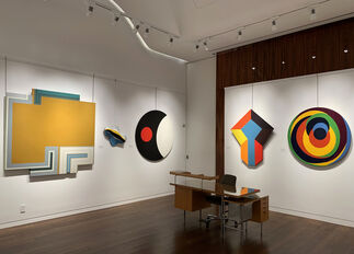 The Shaped Canvas Movement, installation view