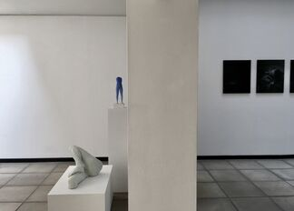 Water for my mind, installation view