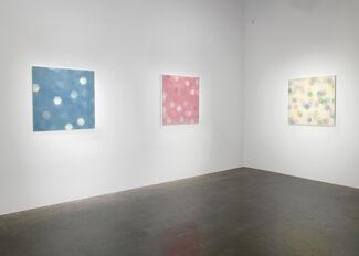 Mike Solomon: Immediate Splendor, installation view