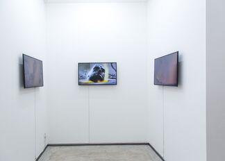 Paolo Ciregia - Dispositivi di resistenza, installation view