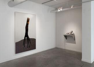 Alex Fischer 'Dry Pixels and Wet Molecules', installation view