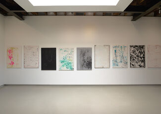 Tom Owen: He Musclyer, installation view