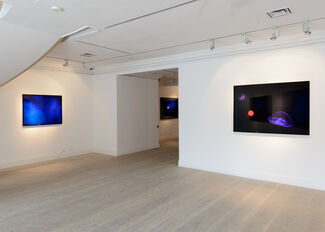 Window Project: The Physical Possibility of Inspiring Imagination in the Mind of Somebody Living, installation view