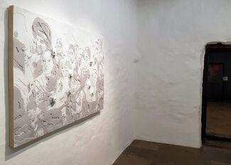 Amparo Sard - Demasiada empatía, installation view