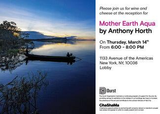 Mother Earth AQUA, installation view