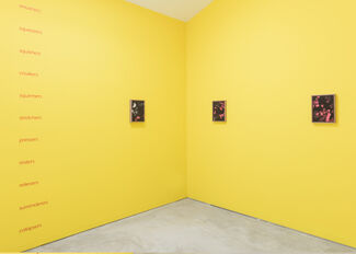 Forgetting the Words, installation view