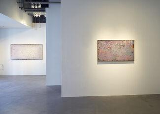 Stanley Boxer   Gradations, installation view