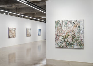 Enfolding Landscape, installation view