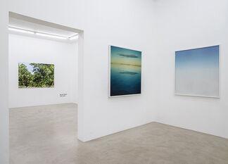 "Naruki Oshima ""haptic green"", installation view"