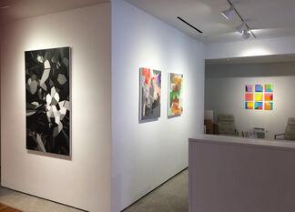 Marfa Intrigue, installation view