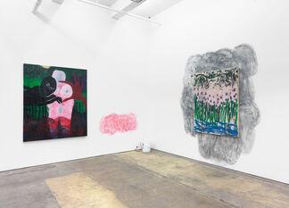 """ANDREW BIRK, """"TRU AF"""", installation view"""